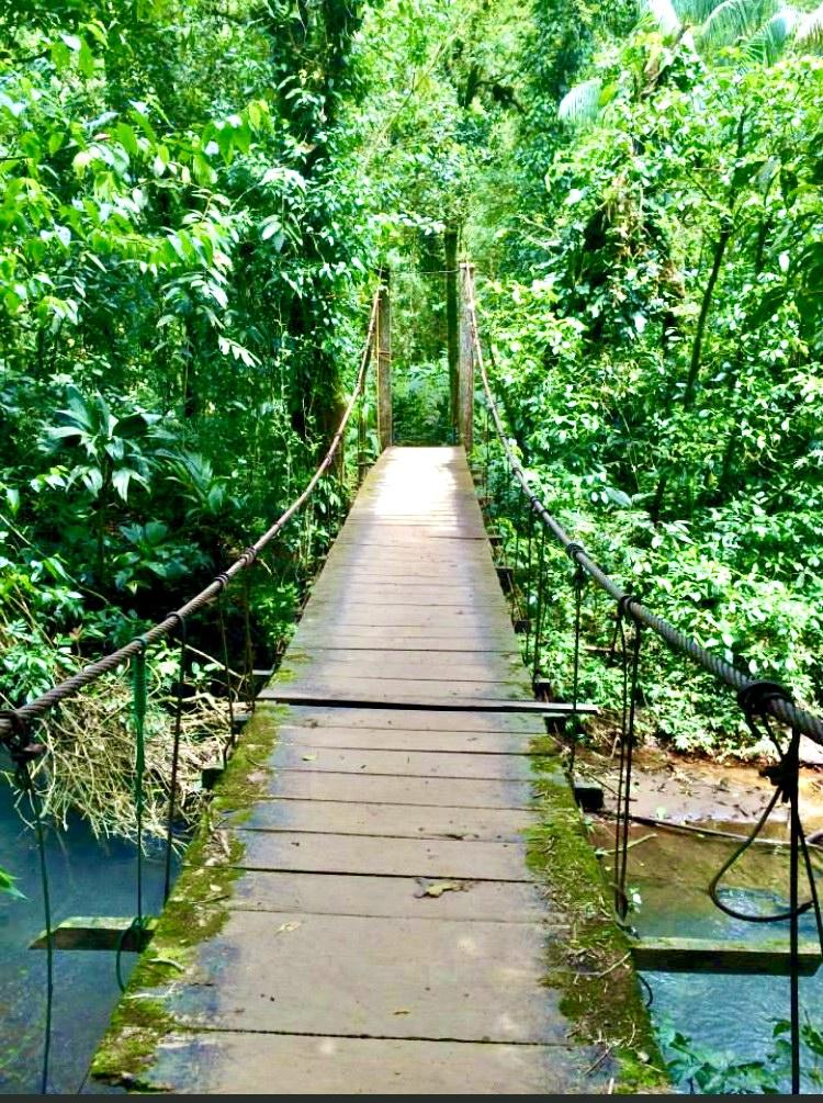 Rio Celeste Bridge
